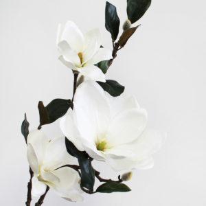 White Permanent Botanical Magonolia