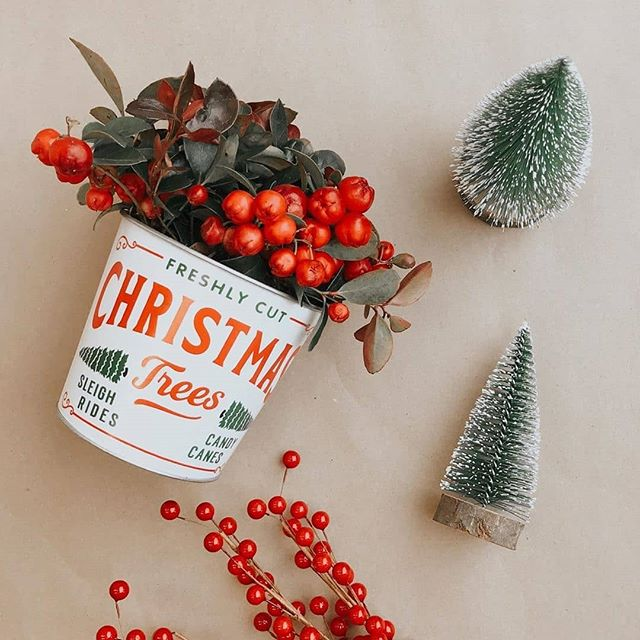 """Holiday Floral Arrangement in Metal """"Christmas Trees"""" Pot"""